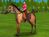 Лошади для Мальчиков