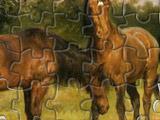 Пазлы Лошади