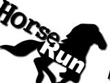 Сбежавшая лошадь