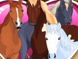 Игра Ухаживать за Лошадьми